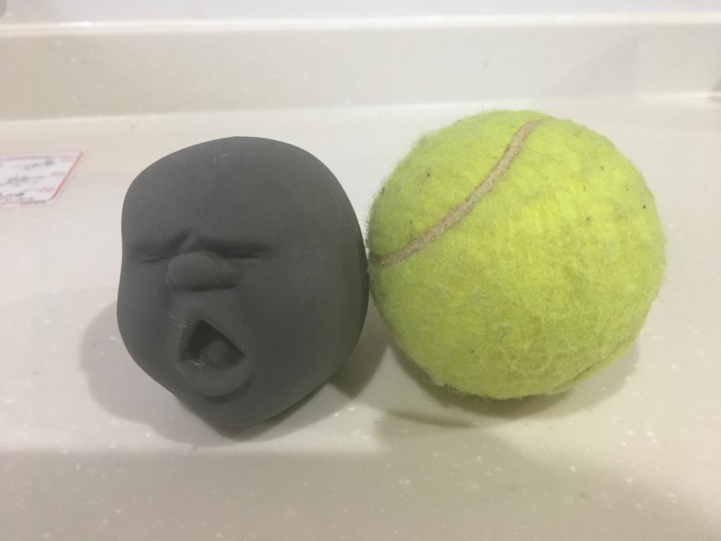 カオマルとテニスボールの大きさ比較